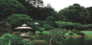Jak stworzyć ładny, prosty ogródek