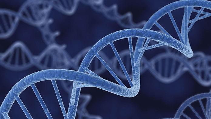 Czy warto decydować się na badania genetyczne w ciąży